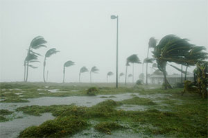 Hurricanes & Florida Property Management