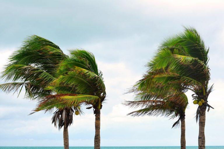 5 Hurricane Preparedness Tips for your HOA