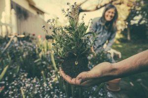 HOAs & community gardens