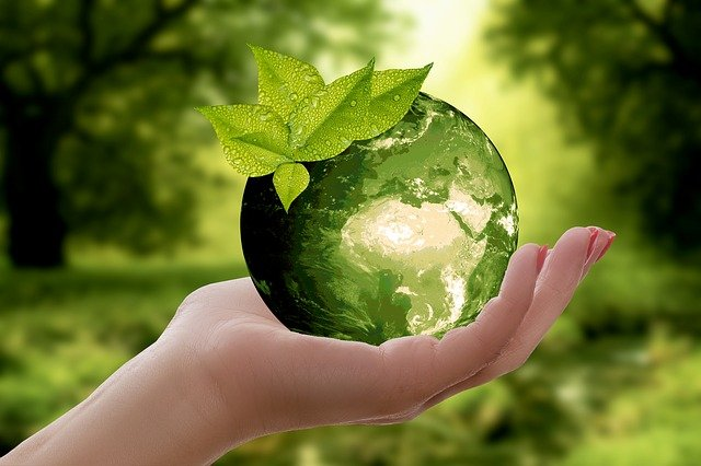 how your HOA can help the environment